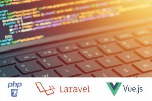 Sviluppo Laravel/VueJs